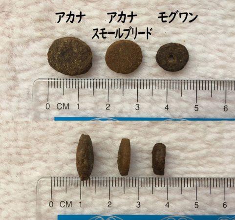 モグワンとアカナ粒サイズ